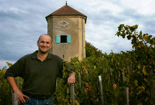 Arbois en Jura: eigenwijze druiven, producenten en wijnen