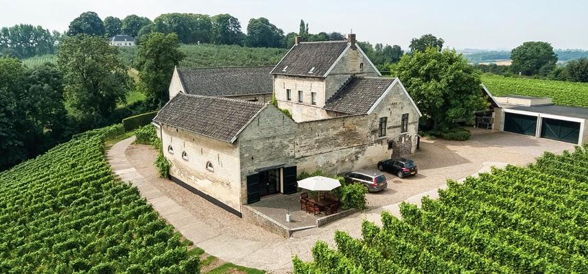 Nederlandse wijn verdeelt de geesten