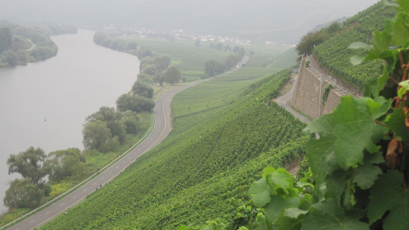 Ahr, Moezel en Pfalz uit ingepakte flessen
