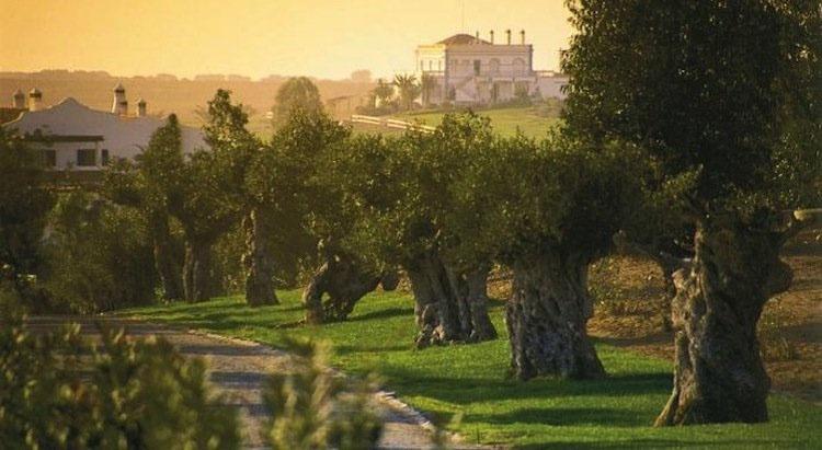 Portugal trilogie III - Autochtone druiven bieden boeiende wijnen in Zuid Portugal