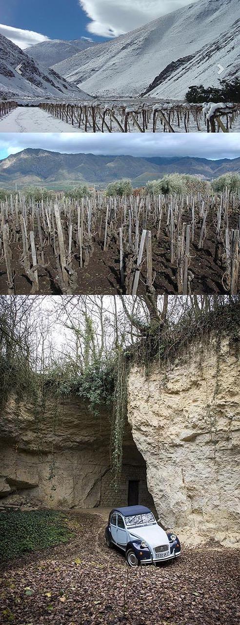 Over troetelkinderen, boerenpummels en het zout der aarde (maidenproeverij)