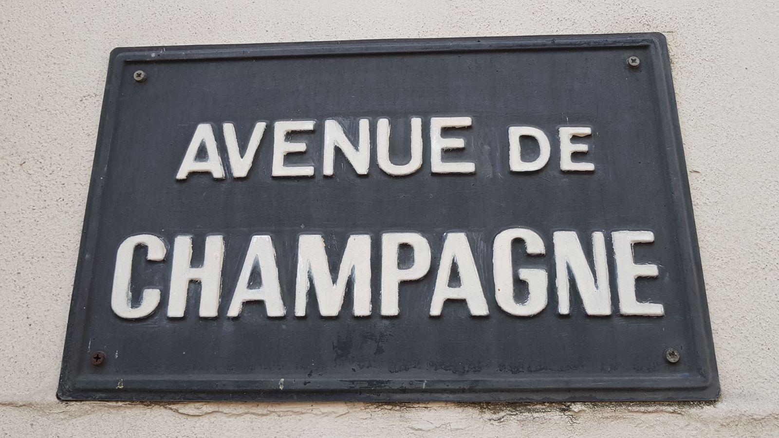Leerzame studiereis naar Champagne smaakt naar meer