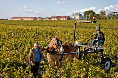 Drie stijlen Bordeaux, om met vrienden van te genieten